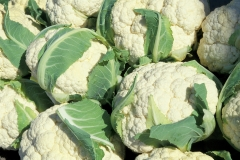 cauliflower-805414_1920